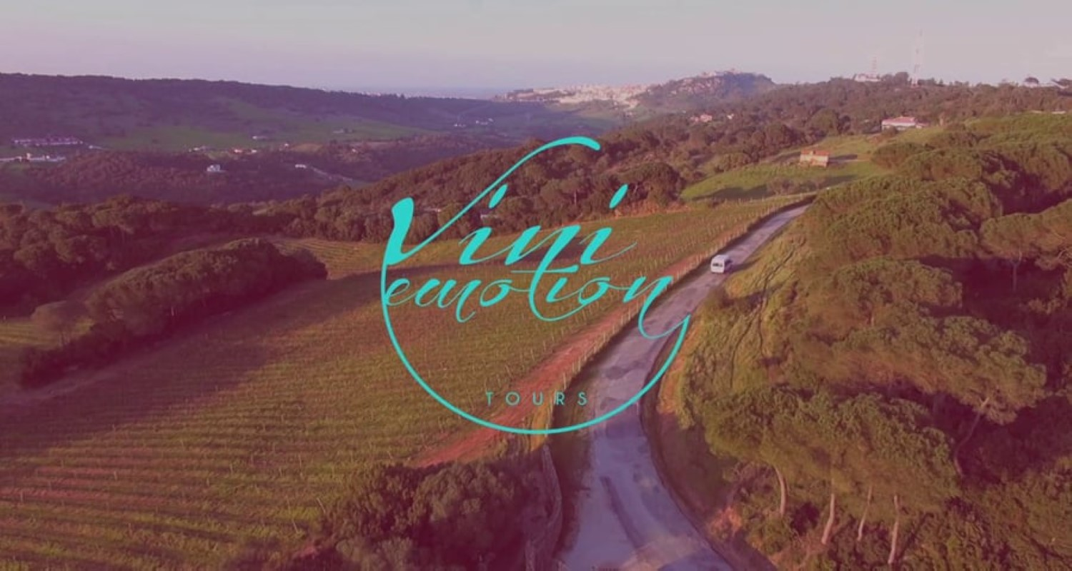 Vini Emotion Tours